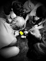 7 Se-N-Se Leefgroepenwerking
